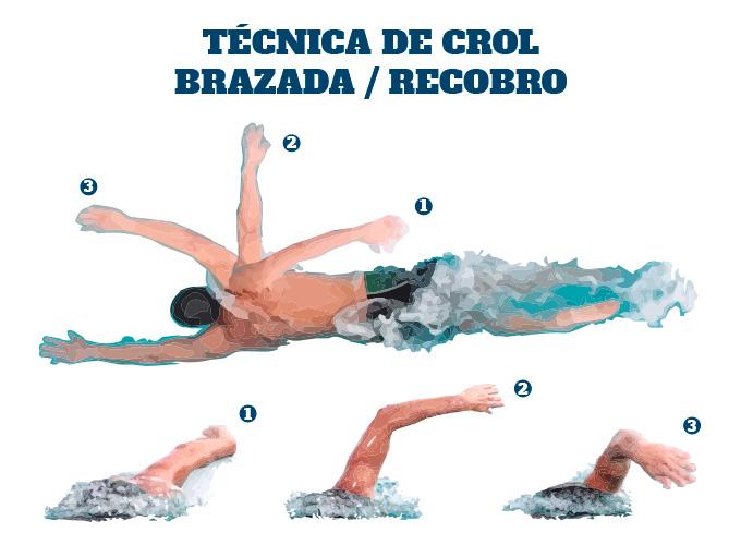 Técnica de Crol en Triatlón: el recobro de la brazada