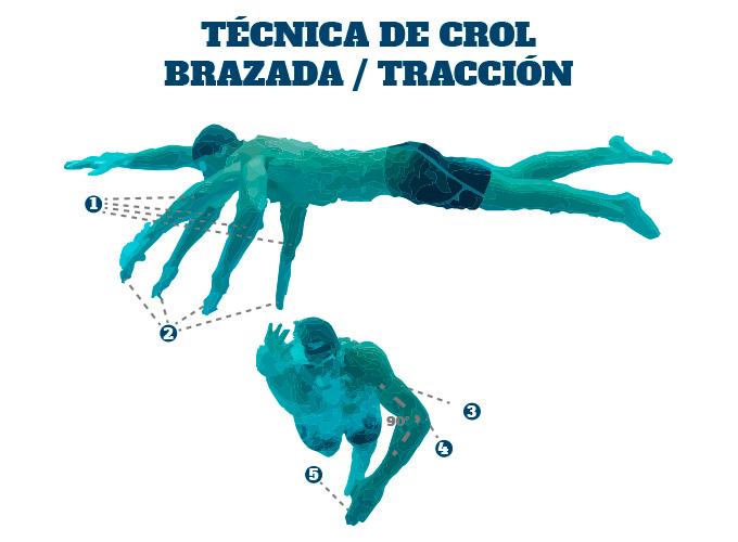 Técnica de Crol en Triatlón: la tracción de la brazada