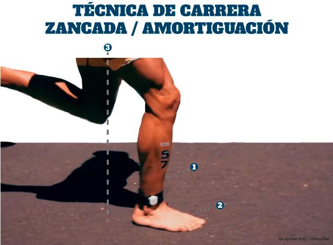 técnica de carrera en triatlón fase de amortiguación de la zancada