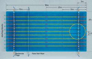 técnica de brazada de crol longitud de brazada frecuencia de brazada y swolf