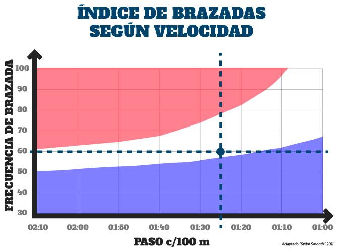 técnica de brazada nado crol medición de la frecuencia de brazada según velocidad en nado crol