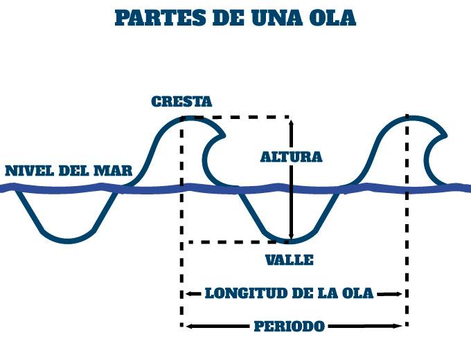 cuales son las partes de una ola en la natación en aguas abiertas